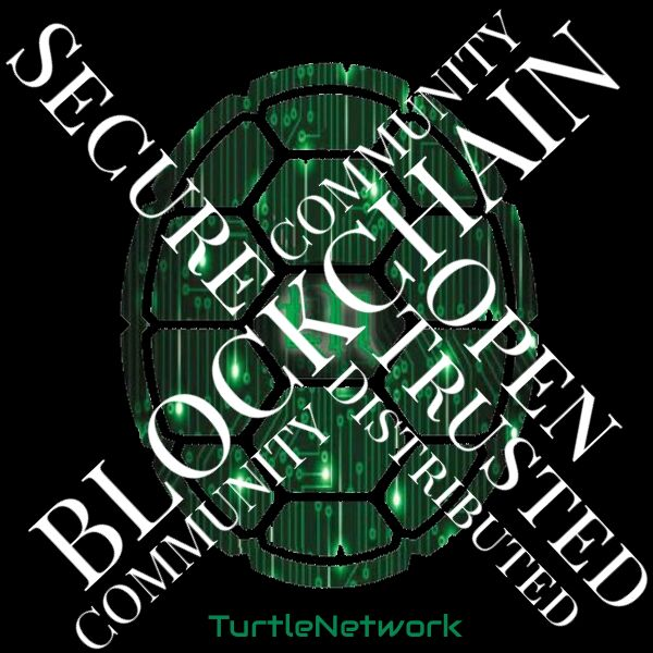 Turtle Network: Did you Know?