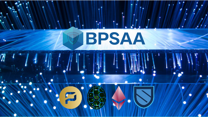 Turtle Network Press Release – BPSAA Alliance
