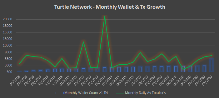 Turtle Network monthly Review - September 2020