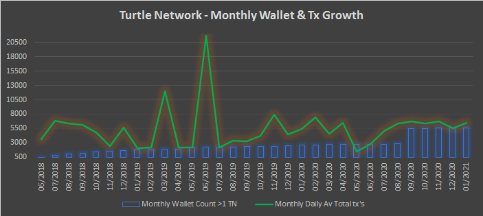 Turtle Network Jan 2021